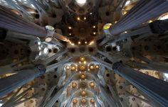 Sagrada Familia in Barcelona - Gaudí wanted the pillars to look like trees