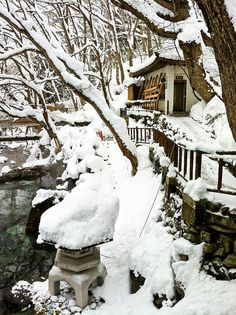 Winter in a Japanese garden...I miss the snow.