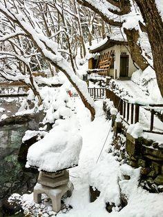 Winter in a Japanese garden