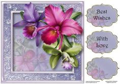 Gorgeous Tropical Orchids 8x8 Quick Topper on Craftsuprint - Add To Basket!