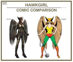 """231 Likes, 5 Comments - • Accurate.DCTV • dctv fanpage (@accurate.dctv) on Instagram: """"• Hawkgirl - Comic Comparison • Similar to Hawkman, I was disappointed in Hawkgirl as a character…"""""""
