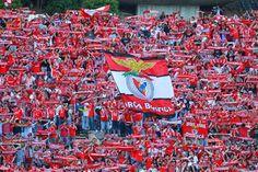 'Bandeiras e Tarjas com o Símbolo do Benfica!'
