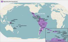 8 Best Zika images