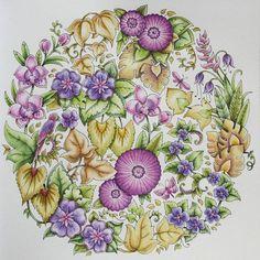#johannabasford #magicaljungle #coloringbookforadults #coloring #coloringforgrownups #desenhoscolorir #coloringmasterpiece #secretgardengallery #bayan_boyan #arttherapy #derwent #inktense #malbuchfuererwachsene #malarbok