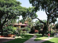 """This is typical of Cuernavaca, Mexico.  Beautiful green grass and trees and flowers everywhere.  It isn't called the """"City of Eternal Spring"""" for nothing.  Very mild temperatures."""