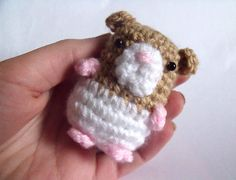 1000+ images about Home made Hamster toys on Pinterest ...