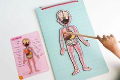 Aprendiendo anatomía con Bodymagnet de Janod   Imprimible