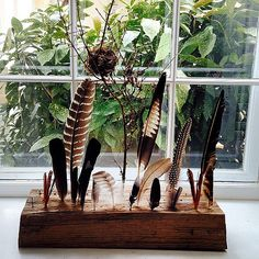feather collection by artist Golly Bard