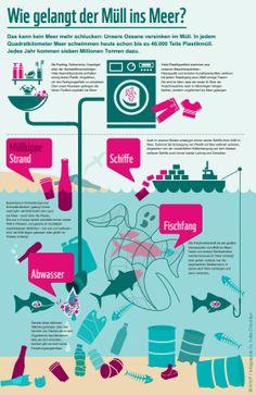 Wie kommt der Müll ins Meer