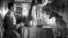 Phantom Lightning: Classics: 'La Ronde' (1950) and 'The Earrings of Madame de...' (1953)