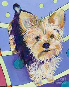 Yorkshire Terrier Painting - Claire by Pat Saunders-White #yorkshireterrier