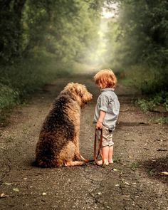 Dogs are our link to paradise. They don't know evil or jealousy or discontent. To sit with a dog on a hillside on a glorious afternoon is to be back in Eden where doing nothing was not boring--it was peace. Milan Kundera