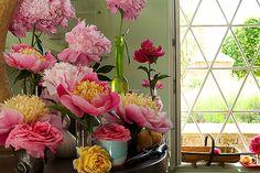 amazing window  Ashley Hicks - Interior Design and...