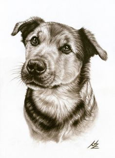 "Saatchi Online Artist Nicole Zeug; Drawing, ""Dogs Eyes"" #art"