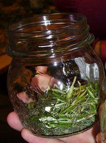 MAMMATRAFFICONA: Oleolito di timo e rosmarino