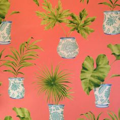 Palms Wallpaper, blue and white ginger jars