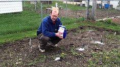 Benefits of Using Epsom Salt in the Garden -The Wisconsin Vegetable Gardener Straight To The Point