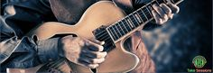 {Accelerate Your Guitar Education|Built by guitarists for guitarists - learn guitar #learnguitar