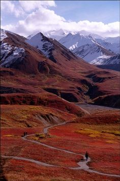 Denali, Alaska.  Loved our trip here.I want to go see this place one day. Please check out my website Thanks.  www.photopix.co.nz
