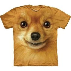 1f468135 Pomeranian Face Dog Adult T-Shirt The Mountain The Mountain, http://
