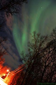 Noorderlicht, Aurora Borealis, Tromsø, Norway, 2017.