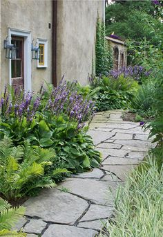 A rustic walkway of irregular bluestone and a garden space heavily dependant upon texture: the robust foliage of Hosta and the feathery fronds of Ostrich Fern (Matteuccia struthiopteris), contrast well with the delicacy of the Variegated Ribbon Grass (Phalaris arundinacea var. picta) across the path. A lot of interest can be generated within a small plant palette.