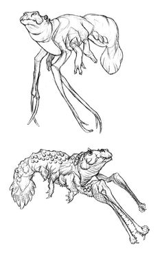 The Shrimpopotamus and the Shrimpodile--two formidable megafaunal organisms locked in an ongoing struggle for dominance of their shared ecosystem. Lords of the Nile Creature Feature, Creature Design, Animal Mashups, Eldritch Horror, Far Future, The Uncanny, Monster Mash, Zoology, Kamen Rider