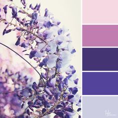 latest images kids color palette lavender popular work : In regards to setting your business up for fulfillment, there is lots that you can do to stack the deck with your favor. You will get clear on your br. Beach Color Palettes, Colour Pallette, Colour Schemes, Color Combos, Pantone, Paint Color Wheel, A Silent Voice, Crazy Colour, Aesthetic Colors