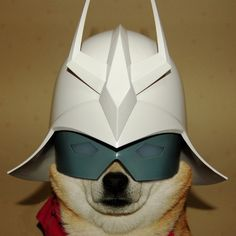 Char Inu: Long Live Zeon and Doggy Treats