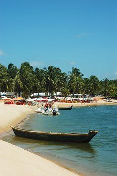 Gunga Beach, alagoas, Brasil