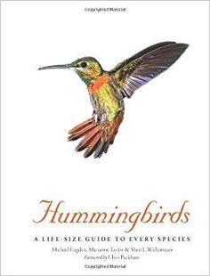 Telecharger Hummingbirds A Life Size Guide To Every Species Edition En Anglais Gratuit