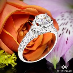 "The Whiteflash ""Ribbon Halo"" engagement ring is a ""ringer"" for Tiffany & Co's Schlumberger® setting."