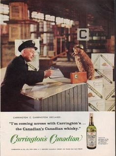 """Description: 1959 CARRINGTON'S CANADIAN vintage print advertisement """"I'm coming across with Carrington's""""-- Carringon C. Carrington declares: I'm coming across with Carrington's ... the Canadian's Canadian whisky."""" Look for the gold beaver on the new green bottle -- your assurance it's Carrington's! -- Size: The dimensions of the full-page advertisement are approximately 8.5 inches x 11.5 inches (22cm x 29cm). Condition: This original vintage advertisement is in Very Good Condition unless…"""