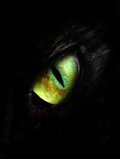 97 Best OJO images in 2019 | Eyes, Eye art, Beautiful eyes