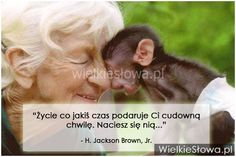 Życie co jakiś czas podaruje ci... #Brown-H-Jackson-Jr,  #Życie
