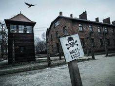 --- Photo by @zhu_sida ---Auschwitz I. Fences of the camp  a watch tower and a building which was the SS Administration (department IV) headquarters.