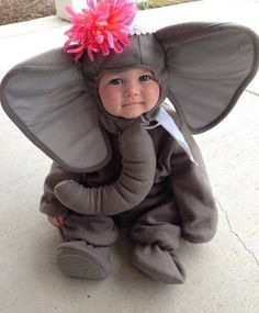 So Cute Baby Elephant Costume for Halloween