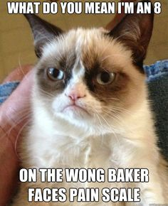 Grumpy Cat: What do you mean I'm only an 8 on the Wong Baker Faces Pain Scale???