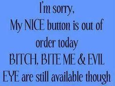 I'm sorry, my nice button is out of order today bitch, bite me & evil eye are still available though. #memes