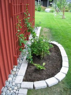 Plants next to shed Dream Garden, Garden Art, Garden Design, Garden Borders, Garden Trellis, Diy Patio, Patio Ideas, Garden Projects, Garden Inspiration