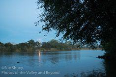 The moon rises through the trees on the Sacramento River.