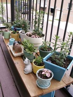 Bench to display patio plants.