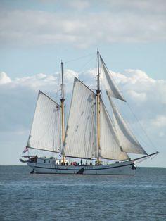 #Zeilcharterschip 'Zeemeeuw'. Dutch Barge, Sail Away, Tall Ships, Sailboat, Sailing Ships, Chips, Sea, Boats, Sailing Boat