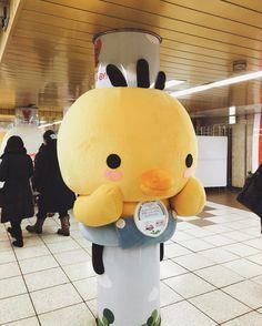 東京メトロ新宿駅メトロプロムナードにたまごクラブひよこクラブ23周年記念のぬいぐるみ出現! たまひよちゃんが柱になってる柱ごとに表情が違って可愛い Shinjuku-station Tokyo iPhone7/Onecam/VSCO  #新宿駅 #Shinjukustation #tokyo #東京 #japan #onecam #vsco #shotoniPhone #instadiary #shotoniPhone7 #instagramjapan #ig_japan #instadiary #iphonephotography #ink361_mobile #ink361_asia #reco_ig #igersjp #mwjp #team_jp_ #indies_gram #hueart_life #streetphotography #iPhone越しの私の世界 #写真好きな人と繋がりたい #写真撮ってる人と繋がりたい #東京カメラ部 #tokyocameraclub