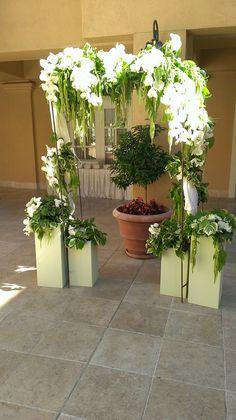 #weddingarch #sunshineflowers #lafayetteparkhotel