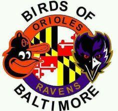 Baltimore Raven Bird Tattoo | ... Ravens Baltimore SuperBowl, Baltimore Ravens, Baltimore Ravens and