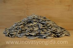 Sunflower Seeds  Origin: Turkey Packaging: 5, 10, 15, 20 kg bags are available  To request an offer, please fill out our offer form.  Or contact us: info@inovasyongida.com