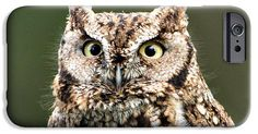 Wise Eyes iPhone 6 Case