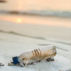 """""""We have become addicted to single-use or disposable plastic.""""   Single-use plastic bans are now beginning to happen across the globe, thankfully their days might be numbered.  #trvst #plasticwaste #environment #plasticpollution #fightplastic #zerowaste Recycle City, Reuse Recycle, Plastic Alternatives, Plastic Pollution, Sustainable Gifts, Sustainable Living, Sustainable Fashion, Eco Friendly House, Plastic Waste"""