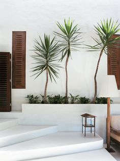 This is such a cute way to create a modern yard for those who don't actually have one. This idea is perfectly balanced with the three trees and shutters on either side, even though the uneven lines of the tree trick your eye into thinking its informally balanced. The white walls make the natural colors pop and help create a relaxing vibe.